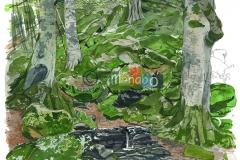 08_15_Terranova_del_Pollino_7766_Q245_216_web_©